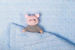 新年编织了在被编织的织地不很细背景的玩具猪 库存照片