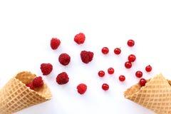 新开胃莓果混合 免版税库存照片