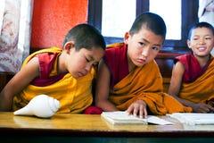 新手修士,尼泊尔 免版税库存照片
