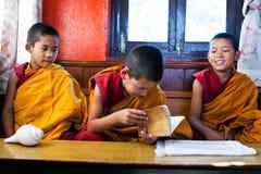 新手修士,尼泊尔 库存图片