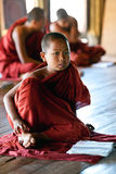 新手修士,缅甸 库存图片