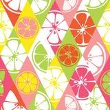 新无缝的样式用桔子,葡萄柚,柠檬,石灰颜色柑橘水多的果子  库存照片