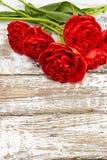 新春天红色郁金香花束在白色木桌上开花 免版税库存图片