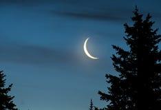 新月形月亮在晚上 免版税库存照片