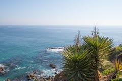 新月形海湾拉古纳海滩 库存图片