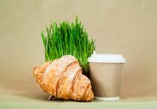 新月形面包三明治mit咖啡杯和燕麦或绿草发芽的种子在椰子碗在灰色背景 绿色生活 库存图片