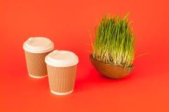 新月形面包三明治mit咖啡杯和燕麦或绿草发芽的种子在椰子碗在珊瑚背景 2019年的颜色 免版税库存图片