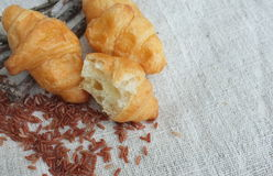 新月形面包和米在织品 免版税图库摄影