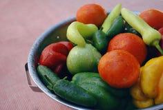 新有机vegtables 免版税库存图片