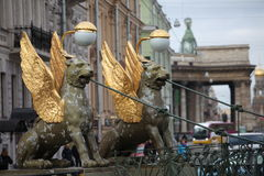 新来的人在圣彼德堡飞过了狮子银行桥梁 免版税图库摄影