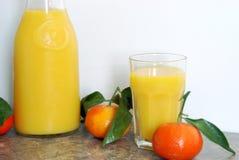 新柑橘混合 库存图片