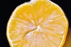 新柠檬片式黄色 图库摄影