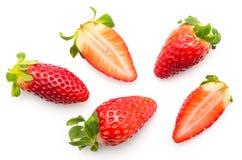 新查出的草莓白色 库存图片