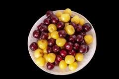 新樱桃背景 宏观细节,被隔绝的cherryes r 免版税图库摄影