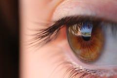 新特写镜头眼睛宏观射击工作室的妇女 免版税图库摄影