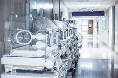 新生儿在医院走廊的孵养器箱子 图库摄影