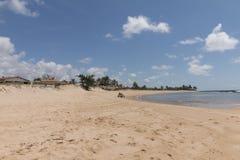 新生南的海岸线-, RN,巴西 图库摄影