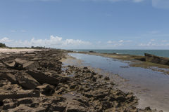 新生南的海岸线-, RN,巴西 免版税库存照片