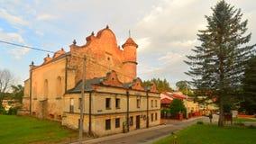 新生犹太教堂在莱斯科 库存照片