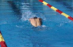 新男性游泳者 免版税库存照片