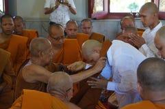 新的佛教修士6月29日 库存图片