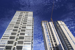 新的大厦早晨 免版税库存图片