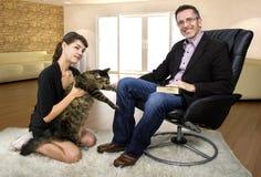 新的家庭宠物猫 库存照片
