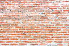 新的家的新的红砖墙壁 库存照片