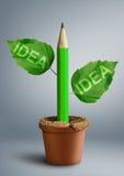 新的想法创造性概念,有叶子的铅笔作为词根 库存图片