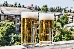 新的成人 在客栈制作在一块玻璃的啤酒 图库摄影