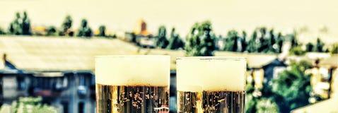 新的成人 在客栈制作在一块玻璃的啤酒 免版税库存图片