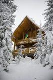 新的木房子在多雪的森林 下雪 乌克兰的公司旗 库存图片