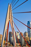 新的桥梁在重庆 免版税库存照片