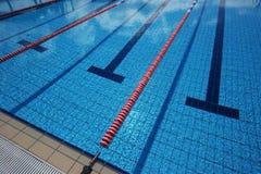 新的池游泳 免版税库存图片