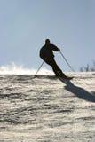 新的滑雪 免版税库存照片