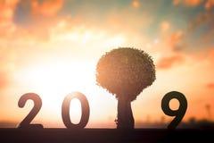 新的环境概念:在2019年新的希望 库存照片