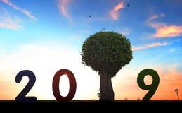 新的环境概念:在2019年新的希望 免版税库存照片