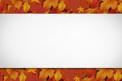 新的甜秋天背景 免版税图库摄影