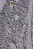新的石渣在老` s森林公路放置了 图库摄影