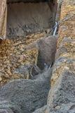 新的管道建设中 免版税库存图片