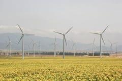 新的能源 免版税库存图片
