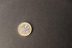 新的英国在黑暗的背景的一个纯正的1英镑硬币 免版税库存图片
