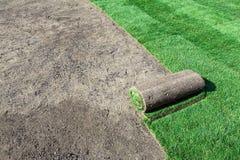 新的草坪 库存图片