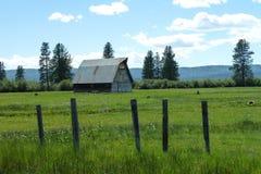 新的草甸,爱达荷历史谷仓 库存照片