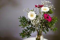 新的起点花束雏菊开花白色红色瓣忠诚的爱 免版税库存图片
