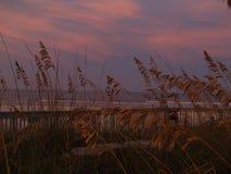 新的Smyrna海滩日落 图库摄影