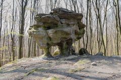 新石器时代的巨大的石头在森林里 免版税库存照片