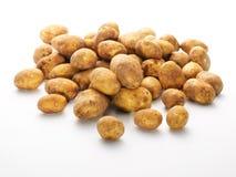 新组嫩马铃薯 免版税库存照片