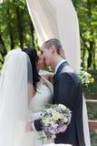 新结婚的夫妇亲吻 免版税库存照片
