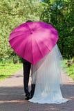 新结婚的夫妇在一把桃红色伞下 免版税库存图片